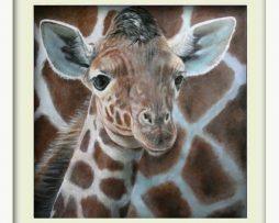 Giraffe (white frame)
