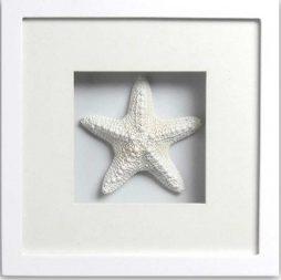 Jungle Starfish (white frame)