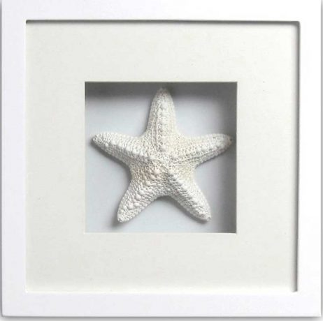 Jungle Starfish (white frame)