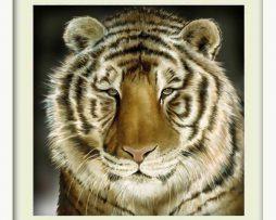 Tiger (White Frame)