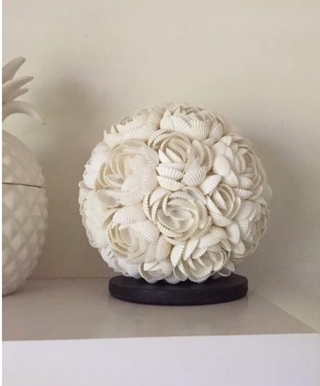 Rose Shell Lamp