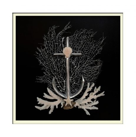 White Framed Anchor Shell Art